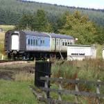DSCF3102